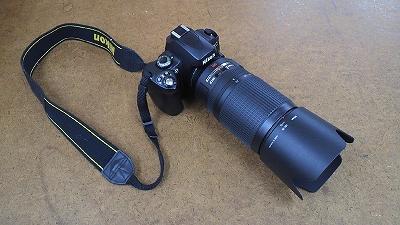 s-P1010059.jpg
